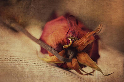Poetry Print by Maria Angelica Maira
