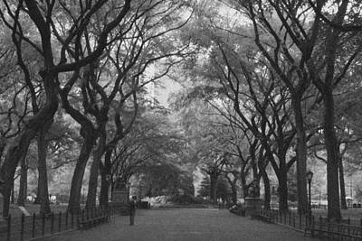 Central Park Photograph - Poets Walk In Central Park by Christopher Kirby