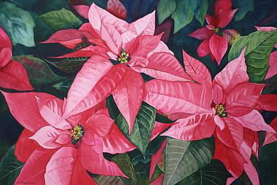 Poinsettia Trio Print by Tina  Sander