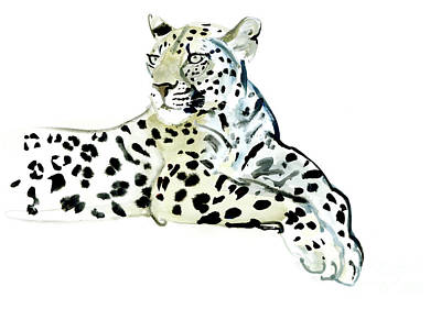 Leopard Drawing - Poise by Mark Adlington