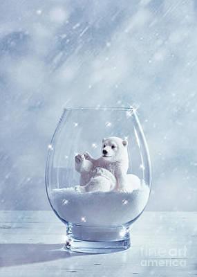 Polar Bear In Snow Globe Print by Amanda Elwell