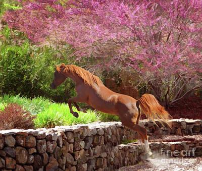 Horse Show Digital Art - Polaris The Jumper by Melinda Hughes-Berland