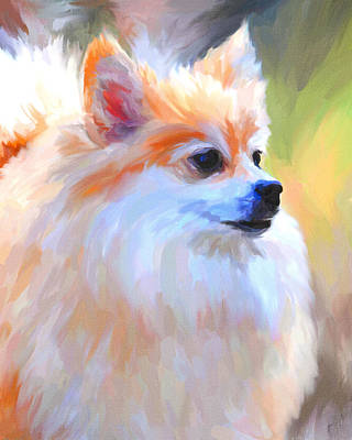 Small Dogs Painting - Pomeranian Portrait by Jai Johnson