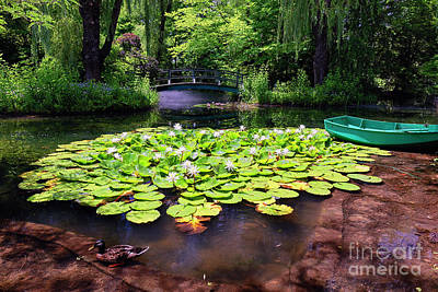 Grounds For Photograph - Pond With Water Lilies And A Footbridge by George Oze