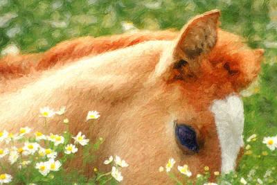 Pony In The Poppies Print by Tom Mc Nemar