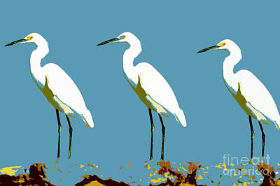 Brite Painting - Pop Egrets by David Lee Thompson