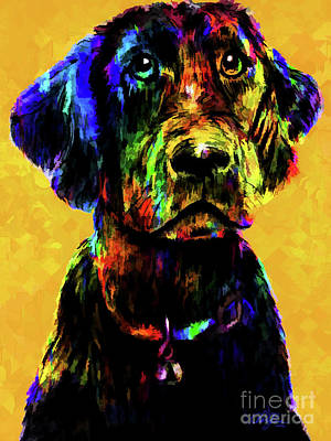 Black Labrador Drawing - Poppy by Cheryl Rose
