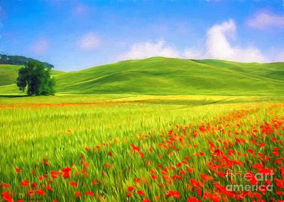 Finland Painting - Poppy Field by Veikko Suikkanen