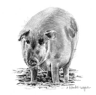 Pig Drawing - Porker Pig - Pride Of The Barnyard by Arline Wagner