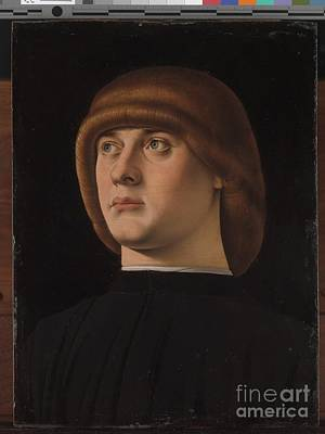 Portrait Painting - Portrait Of A Young Man by Jacometto