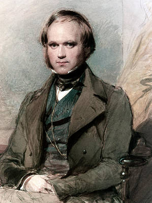 Portrait Of Charles Darwin Print by George Richmond