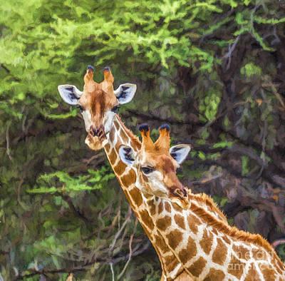 Wild Animals Digital Art - Portrait Of Two Giraffes In Mahango G R  Namibia by Liz Leyden