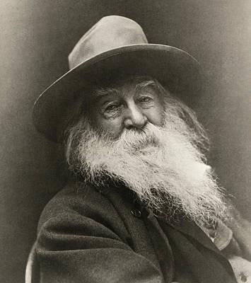 Portrait Of Walt Whitman Print by George Cox