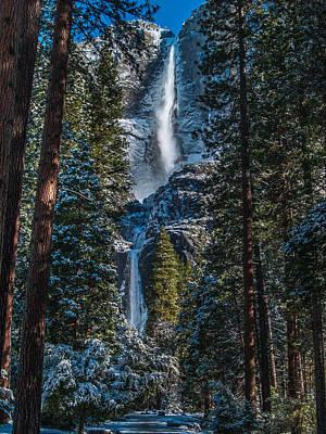 Photograph - Portrait Of Yosemite Falls by Bill Gallagher