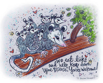 Marsupial Drawing - Possum Family by Maria Bolton-Joubert