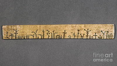 Artifacts Photograph - Potawatomi Medicine Stick by Granger