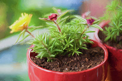 Pottery Painting - Potted Plants by Bonnie Bruno