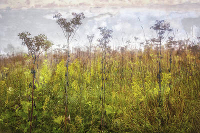 The Nature Center Photograph - Prairie Wildflowers Of Retzer Nature Center  by The Vault - Jennifer Rondinelli Reilly