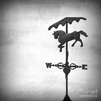 Prancing In The Air Print by Mingtaphotography