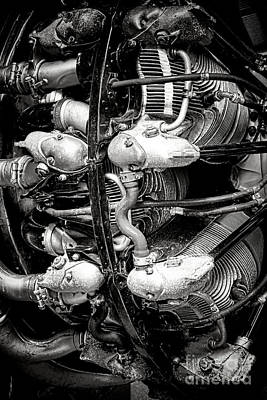 Pratt And Whitney Twin Wasp Print by Olivier Le Queinec