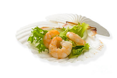 Prawn Appetizer Print by Amanda And Christopher Elwell
