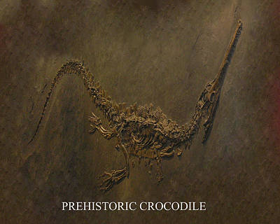 Crocodile Mixed Media - Prehistoric Crocodile - Fossil by Tray Mead