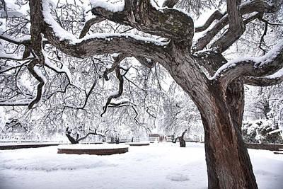Prescott Park Winter Garden Print by Eric Gendron