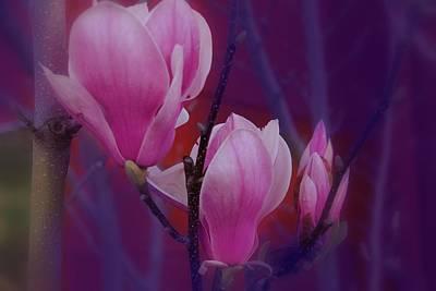 Grow Digital Art - Pretty In Pink by Athala Carole Bruckner