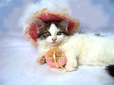 Kitten Photograph - Pretty In Pink by Jai Johnson