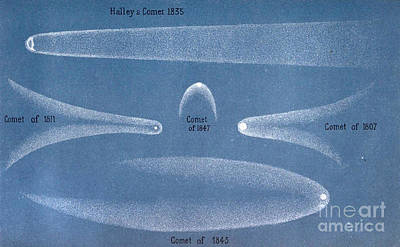Principal Comets, 19th Century Print by Science Source