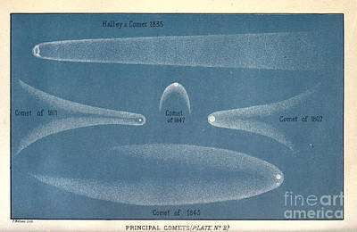 Principal Comets, Plate 2, 19th Century Print by Science Source
