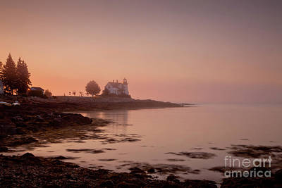 Prospect Harbor Dawn Print by Susan Cole Kelly