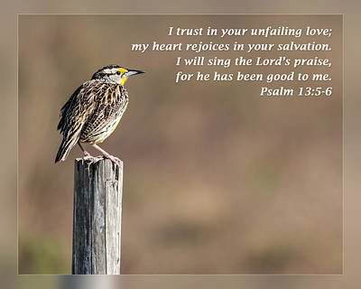 Songs Of Praise Photograph - Psalm 13 5-6 by Dawn Currie