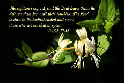 Psalms Scripture With Honey Suckle Flowers Print by Linda Phelps