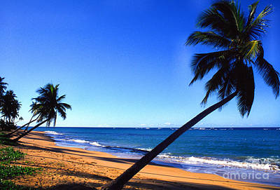 Puerto Rico Beach Print by Thomas R Fletcher