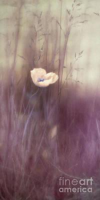 Pulchritude Print by Priska Wettstein