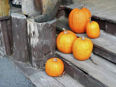 Self Discovery Photograph - Pumpkin Autumn In Adirondacks by Kate  Leikin