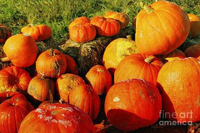 Pumpkin Meeting Print by Jutta Maria Pusl