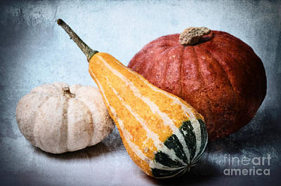 Pumpkin Mixed Media - Pumpkins by Angela Doelling AD DESIGN Photo and PhotoArt