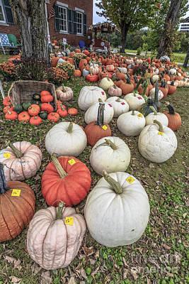 Farm Stand Photograph - Pumpkins For Sale by Edward Fielding