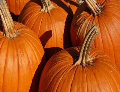 Pumpkins Original by Michael Thomas
