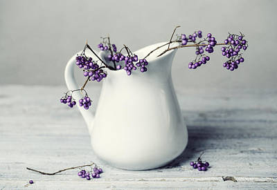 Autumn Photograph - Purple Berries by Nailia Schwarz