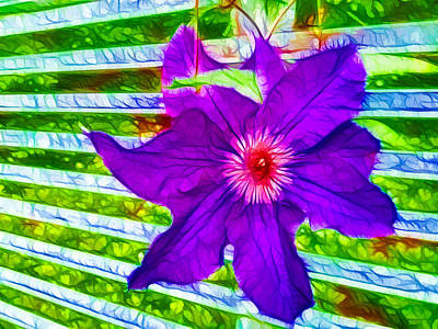 Clematis Painting - Purple Clematis Vine In Bloom by Lanjee Chee