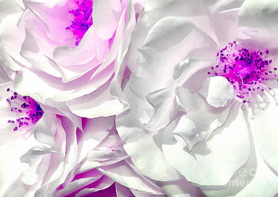 White Flower Photograph - Purple Essence by Krissy Katsimbras