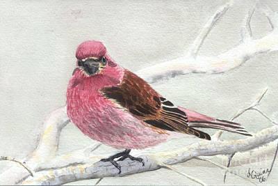 Purple Finch Original by Lynn Quinn