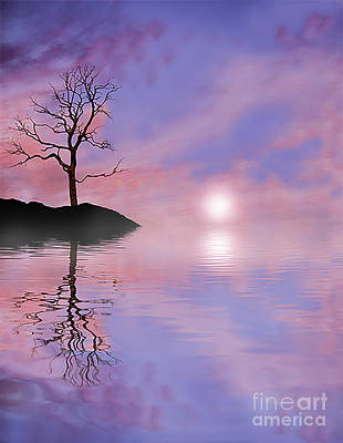 Terra Firma Photograph - Purple Haze by Kevin Williams
