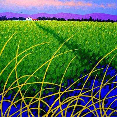 Purple Hills - Wicklow -  Ireland Original by John  Nolan