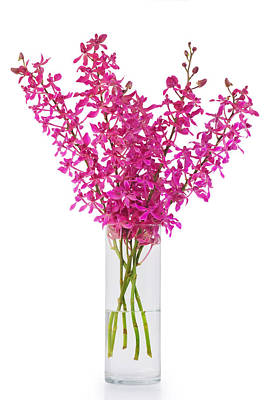 Purple Orchid In Vase Print by Atiketta Sangasaeng