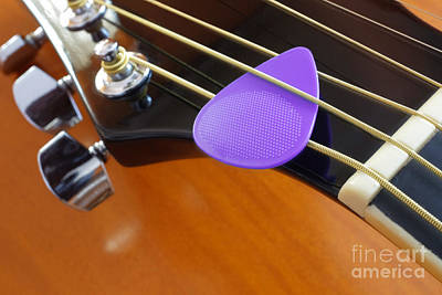 Purple Pick Print by Carlos Caetano