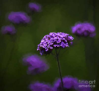 Verbena Painting - Purple Spring by WickedRefined Designs